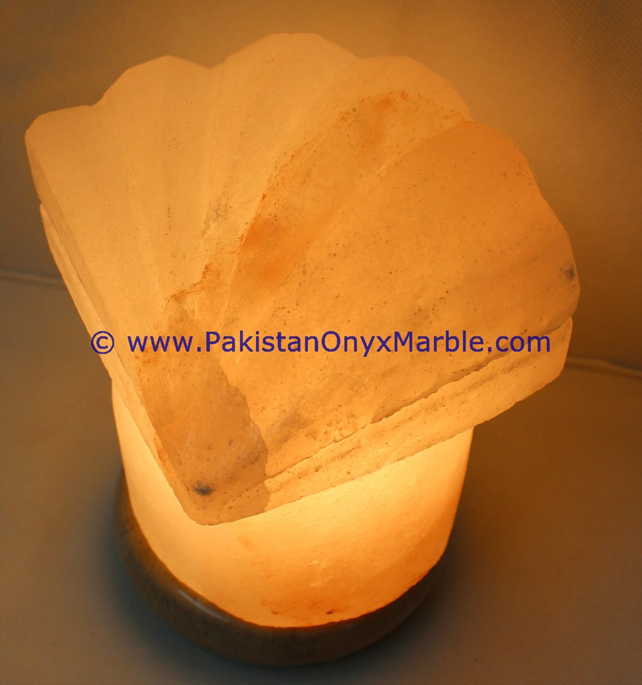 Bedroom Hotel Decoration himalayan ionic salt crystal Flower lamp