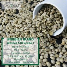 Coffee Bean Vietnam Green Unroasted Arabica Best Price For Sale