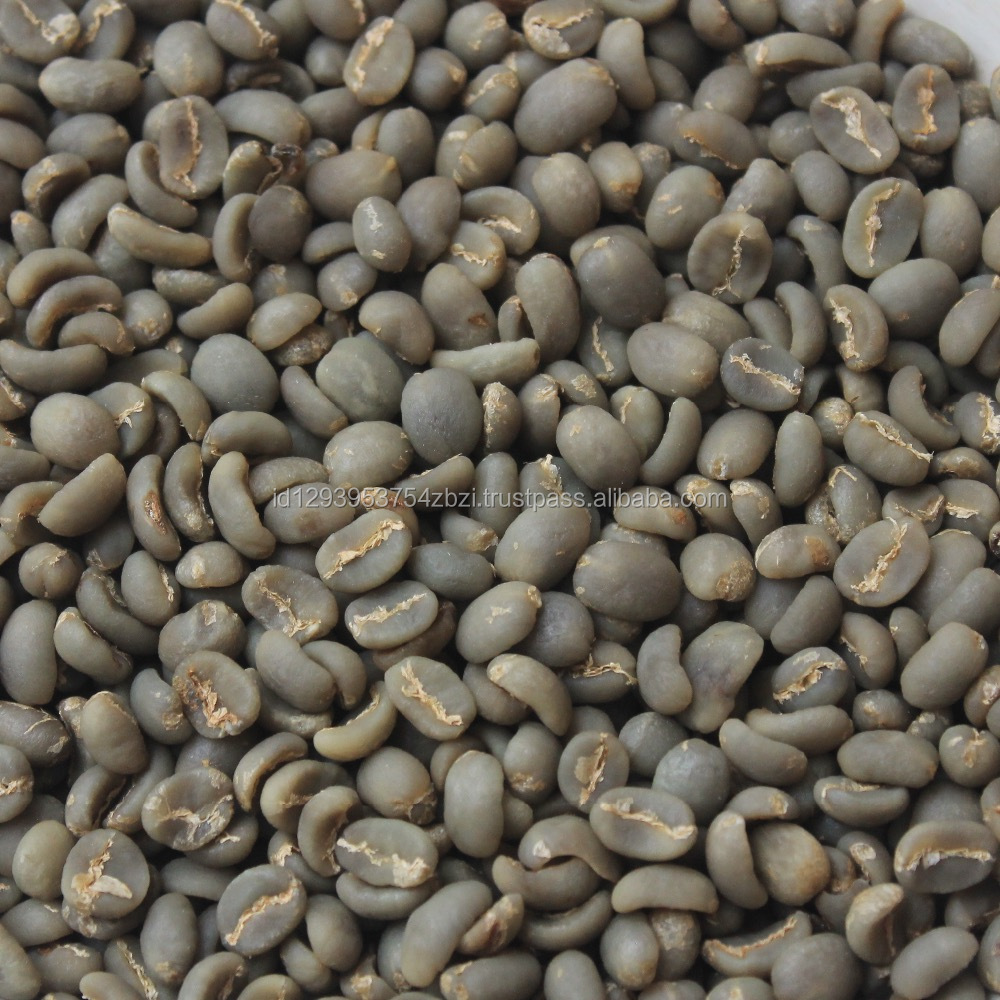 Best Quality and Price Indonesia Aceh Gayo Arabica Green Bean Coffee