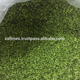 Dried green seaweed for producing fertilizer and feed for animal & fish