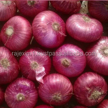 Red Onion Price For Sri Lanka