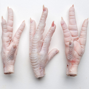 Frozen Chicken Paws Grade A for export