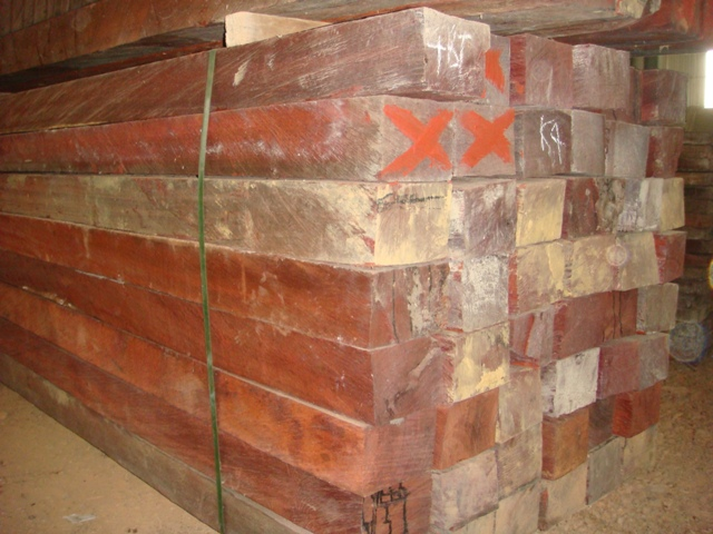 Best Price Padauk Hardwood Log and Sawn Timber for SALE