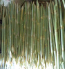 TOP CHEAP PRICE, HIGH QUALITY WITH FRESH SUGAR CANE- TOP PRODUCT EXPORT