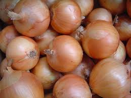Best sales Cultivated Red Onion...
