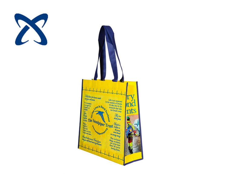 PP woven/ PP non woven shopping bag from made in Vietnam