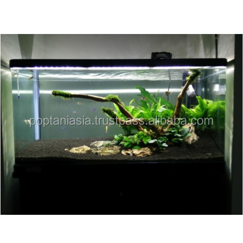 Fish tank customized aquascaping set