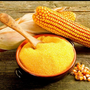 YELLOW CORN GLUTEN MEAL FOR SALE