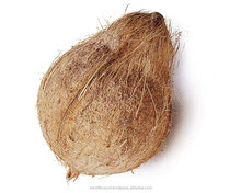 Whole Fresh Semi Husked Coconut for sale with good price from India