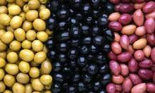 Good Quality fresh Olives all Standard/ green/ yellow and black