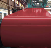 Hot/Cold Rolled GI Prepainted Galvanized Steel Coil Ppgi