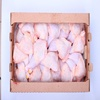 Brazil Halal frozen chicken leg quarters in box