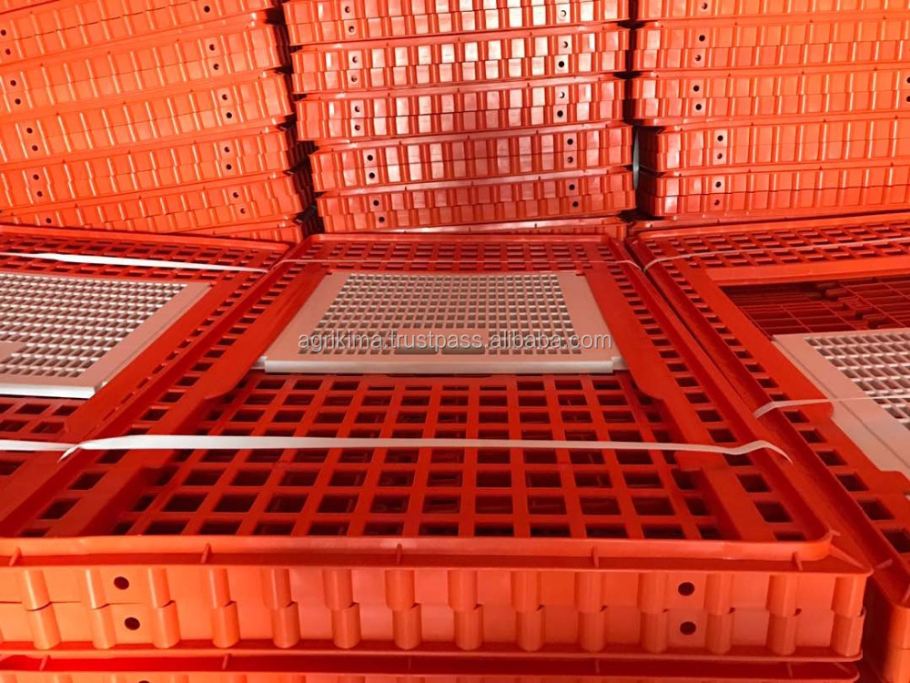 Poultry Chicken Transport assembalable Cage/Box Manufacturer-Manufacturer plastic poultry transport crate/cage