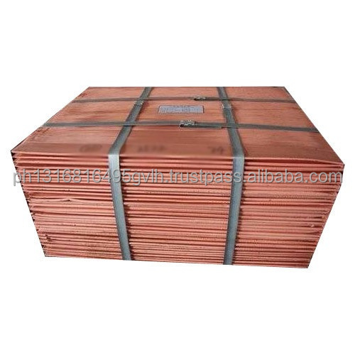Copper-steel Clad Plate/Copper Cathode Used for Conductive Arm/Electronic Bar