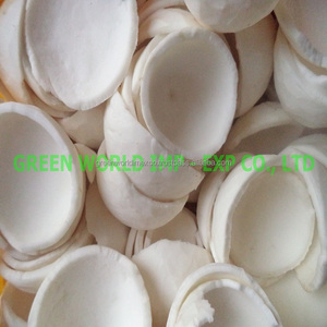 BEST QUALITY OF FROZEN COCONUT MEAT WITH GOOD PRICE