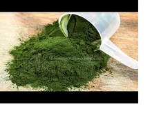 Top grade certified spirulina powder manufacturer with competitive price ISO and HACCP