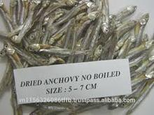 hot sale headless and tailless dried anchovy fish