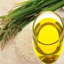 PURE RICE BRAN OIL For Bulk Sale