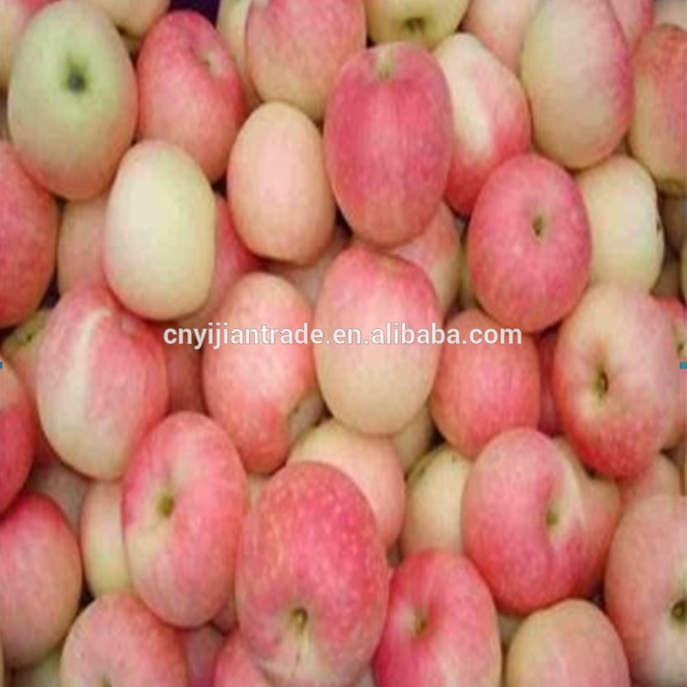 Fresh cheap apple fruit