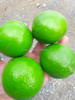 Fresh Lime to Middle East market