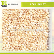 High Quality Ukraine Pearl Barley for Sale
