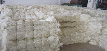 High quality sisal fibre / natural white color sisal fibre / sisal fiber ug grade for Gypsum factory price