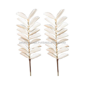 New Style 2018 Factory Direct Supply High Quality Natural White Color Beetle Leaf Decoration Flower