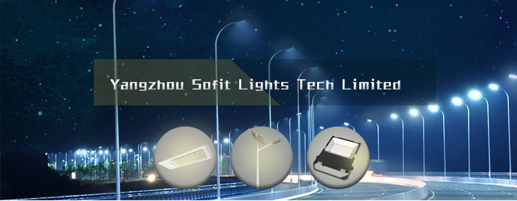 20W to 50W 3m-4m Modern LED Garden Light with Colorful RGB LED Strips on both sides for LED Parking Lot Light