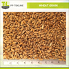/product-detail/ukraine-wheat-grain-prices-50038336188.html