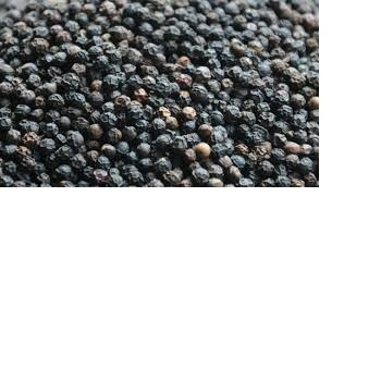 Black Pepper 560-580g powder for sale