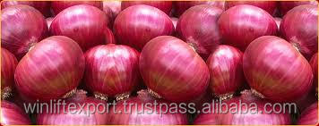 red onion importers in singapore