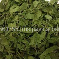 TOP indian product Gymnema sylvestre
