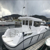 Electric boat 880 fishing boat