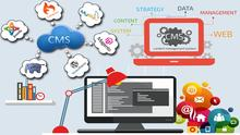 CMS Designing and Development