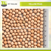 High Quality Ukrainian Whole Yellow Peas