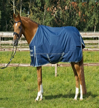 Winter warn outdoor horse rug