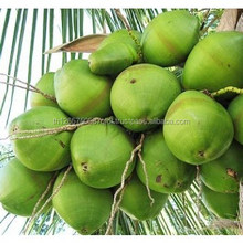 thailand coconut water