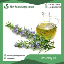 2017 Hot Selling Low Cost Rosemary Essential Oil