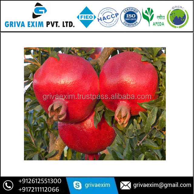 We Offer Export Quality Pomegranate