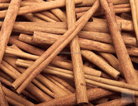 VIETNAM STICK CASSIA BEST PRICE