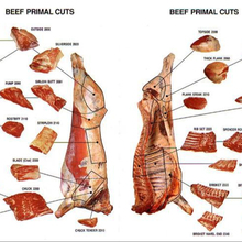 Halal Frozen Beef / Forequarter Cuts 90VL