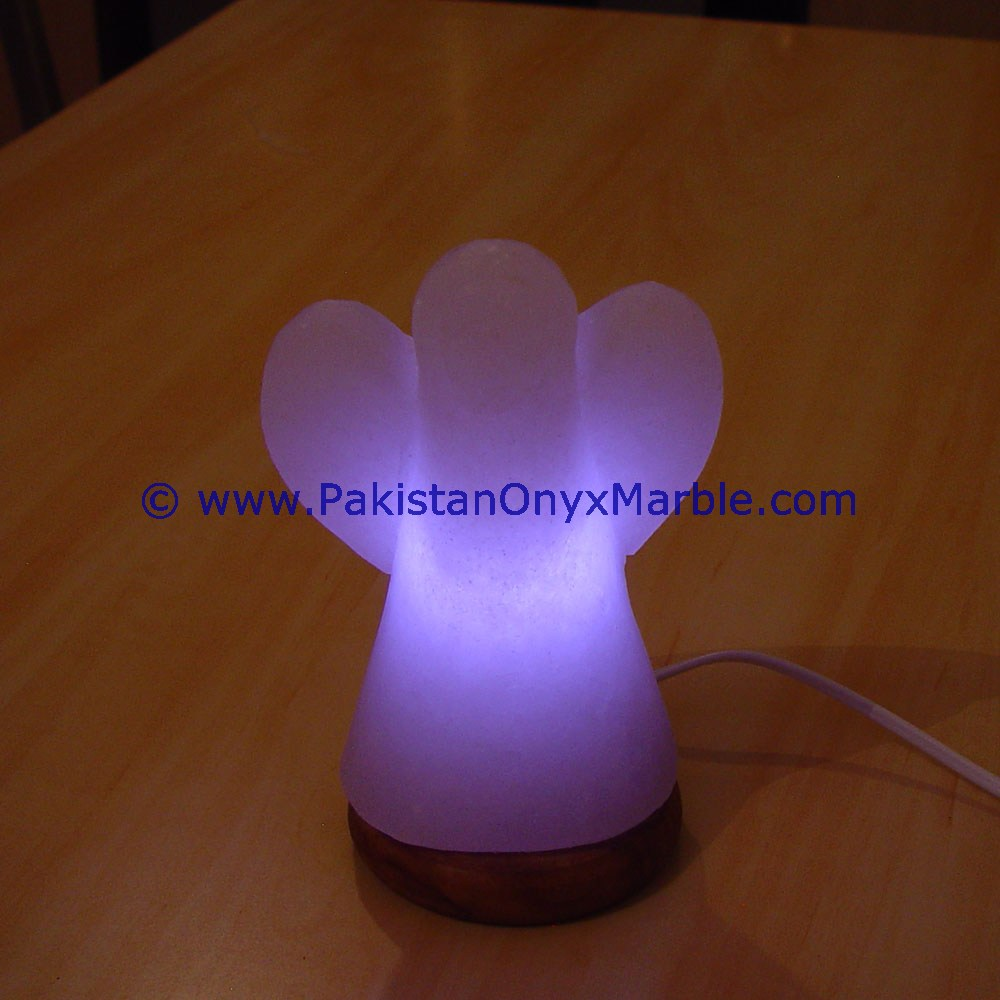 BEAUTIFUL HIMALAYAN USB SALT LAMPS ANGEL SHAPE table lamps