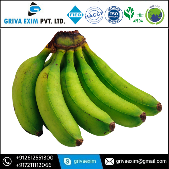 Human Food Grade Banana Exporter of India