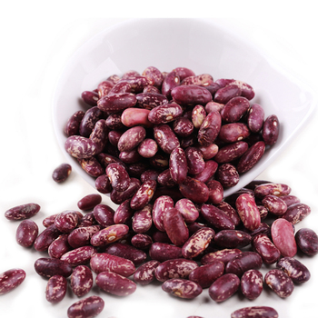 Purple Speckled Kidney Bean Long Shape Cooking Dried Kidney Beans