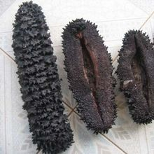 Prickly Fish Dried Sea Cucumber