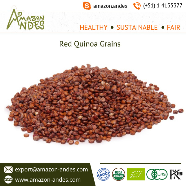 Outstanding Range Red Quinoa Organic from Top Supplier