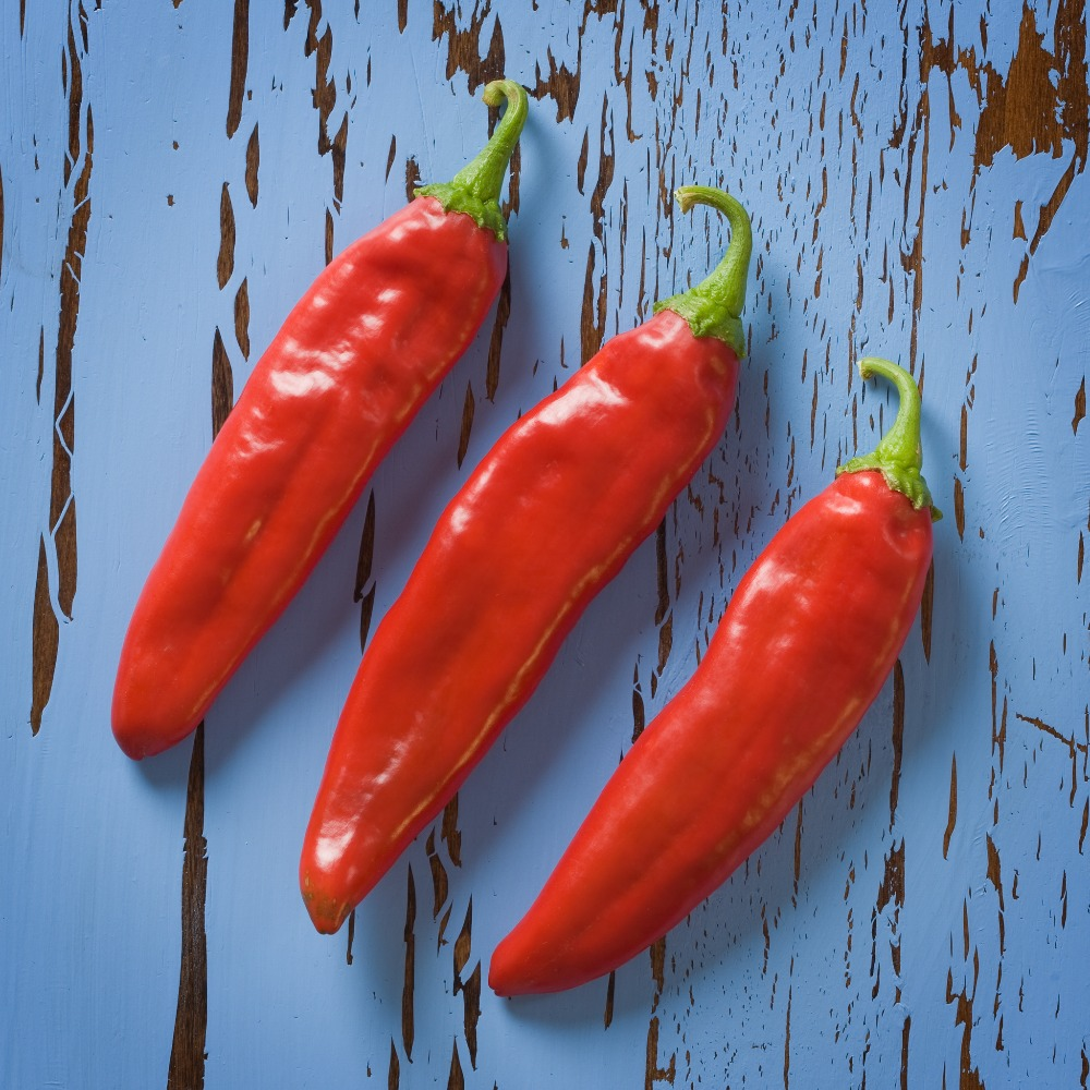 Best price wholesale red and green chilli with many styles
