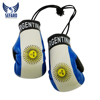 New good quality Argentina printed mini Boxing Gloves Boxing key chains key rings