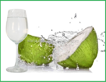Vietnam Fresh Coconut Puree With Best Price