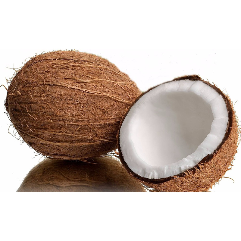 High quality wholesale fresh dehusked coconut